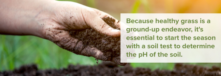 Test your soil to determine its pH level
